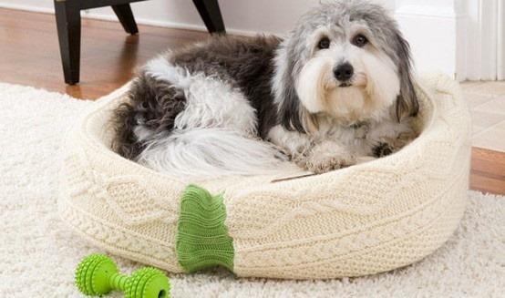 cuccia cane maglione