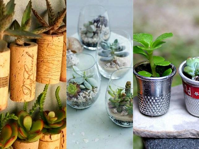 Giardini in miniatura fai da te creativo - Idee per giardini di casa ...