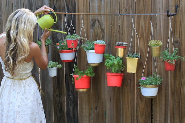 Piccolo giardino verticale fai da te