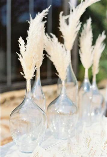 Bocce di vetro con la pampa