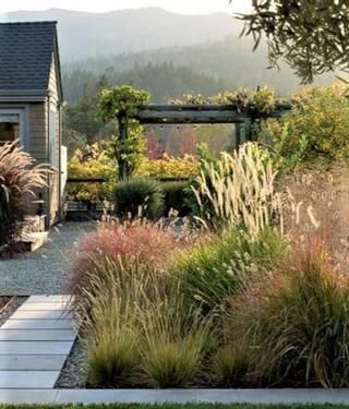 Casa con giardino di pampa