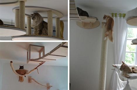 Parco giochi fai da te per il gatto di casa fai da te for Parete attrezzata gatti