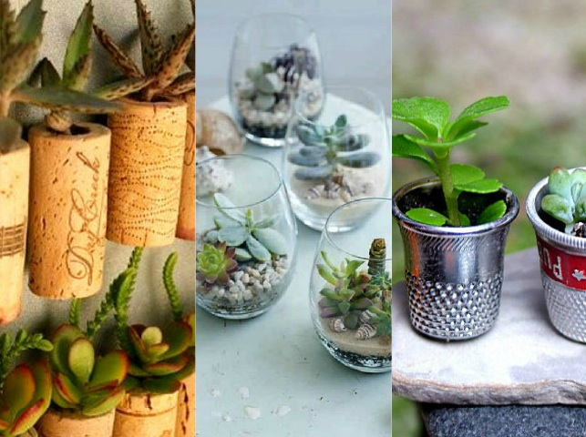 Giardini in miniatura fai da te creativo for Giardini fai da te foto