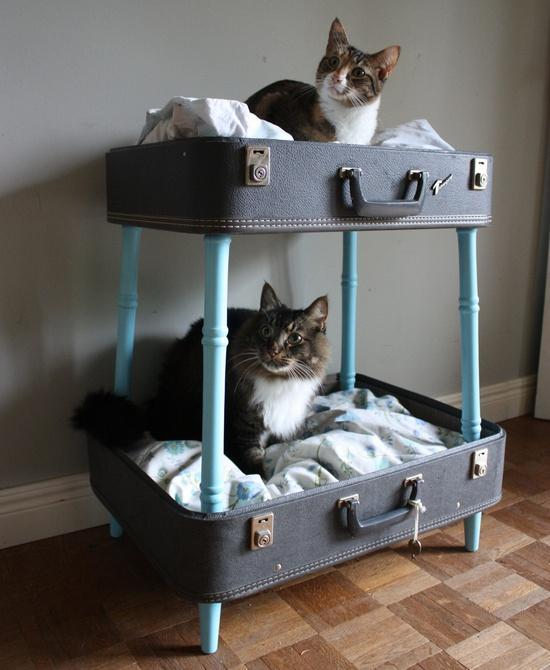 Nuova vita alle vecchie valigie: 7 idee creative