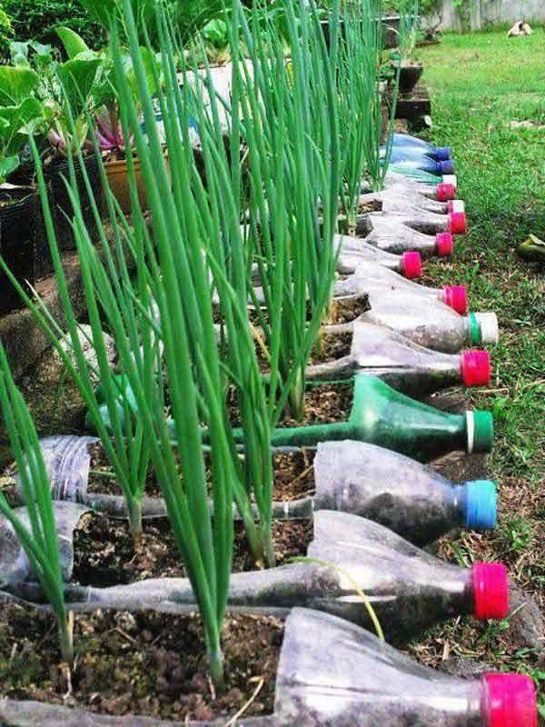 Riciclare le bottiglie di plastica: 10 idee creative