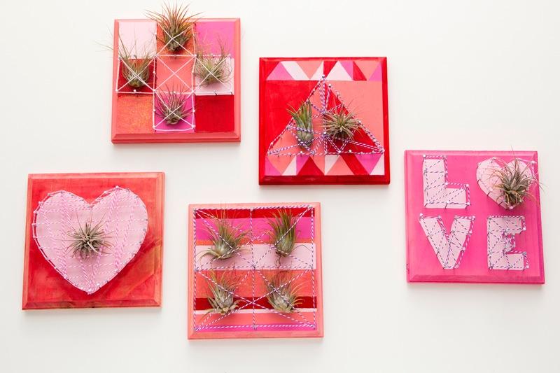 Quadretti di san valentino con piante verticali