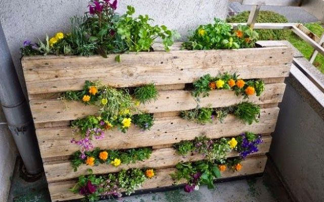 Riciclo creativo e casa eco-friendly fai da te